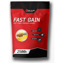 Do4a Lab Fast Gain 2.5 кг (Ваниль Карамель-фундук Клубника-Банан Латте Шоколад)