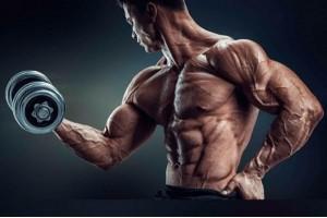 Особенности программы тренировок со стероидами и после курса стероидов.